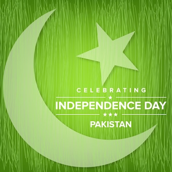 Green pakistan independence day design with moon and star