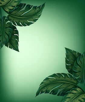 Greenery leaves