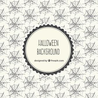 Halloween Background Spiderweb