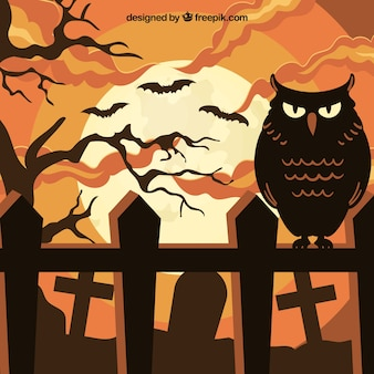 Halloween background with owl and cemetery