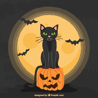 Halloween cat with full moon and bats