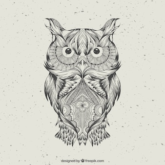 Hand drawn abstract owl