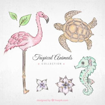 Hand drawn animal collection