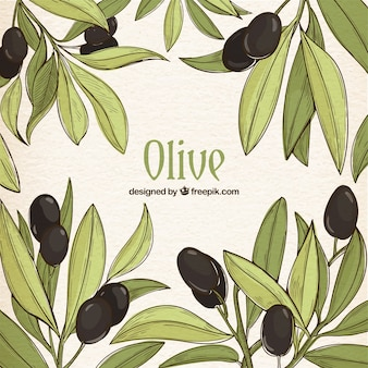 Hand-drawn background of green leaves and black olives