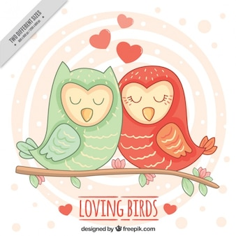 Hand-drawn background with loving birds