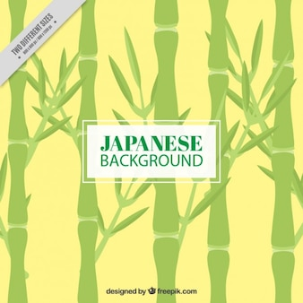 Hand drawn bamboo japanese background