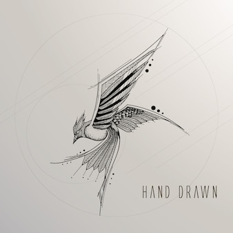 Hand drawn bird