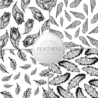Hand Drawn Black and white Feathers Collection