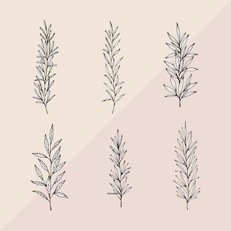 Hand drawn branches with white leaves
