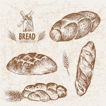 Hand drawn bread collection
