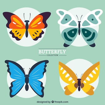 Hand drawn butterflies in colors