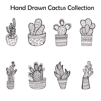 Hand drawn cactus collection