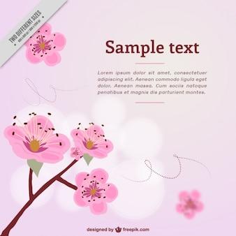Hand drawn cherry blossoms