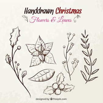 Hand drawn christmas flowers and leaves