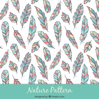 Hand drawn colored feathers pattern
