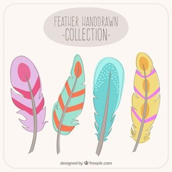 Hand drawn colorful feathers