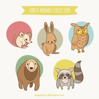 Hand drawn cute little forest animals