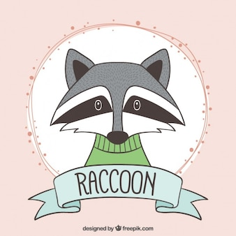 Hand drawn cute raccoon with a green jersey