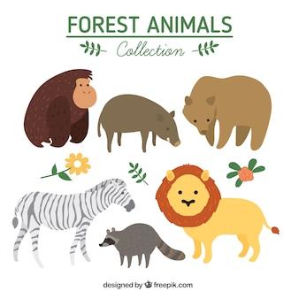Hand drawn cute wild animals