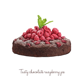 Hand drawn delicious chocolate pie with raspberries and mint