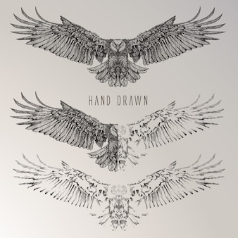 Hand drawn eagle collection