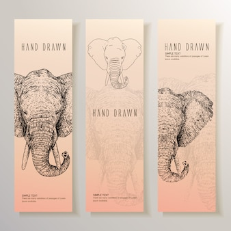 Hand drawn elephant banner