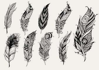 Hand drawn feather collection