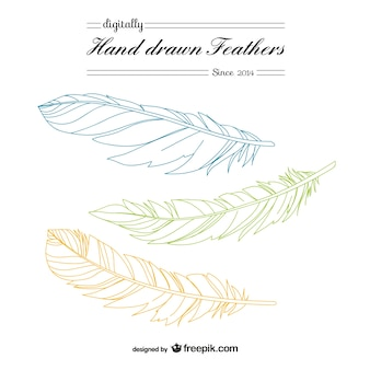 Hand drawn feather vector art