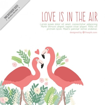 Hand drawn flamingos in love background