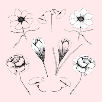 手描きの花のコレクション