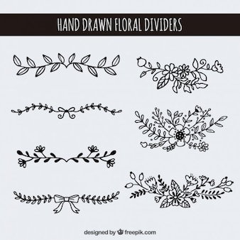 Hand drawn floral dividers