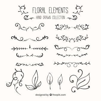 Hand drawn floral elements collection