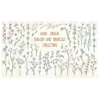 Hand drawn flowers and branches collection