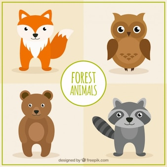 Hand drawn forest animals in flat style