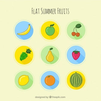 Hand drawn fruits of summertime
