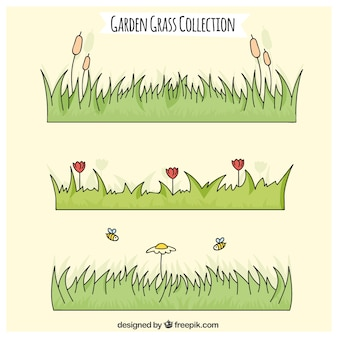 Hand drawn grass with flower collection