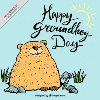 Hand drawn groundhog background
