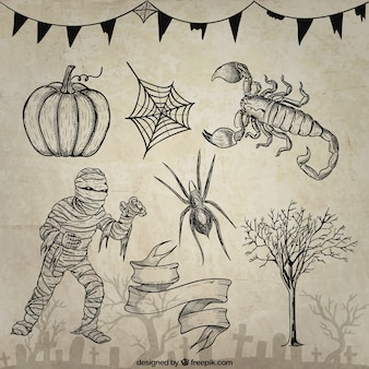Hand drawn halloween elements