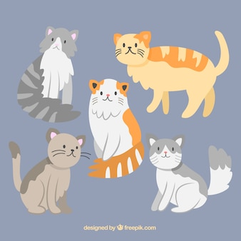Hand drawn kind of cats