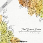 Hand drawn leaves background with waterocolor stains