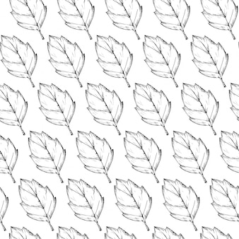 Hand drawn leaves pattern background