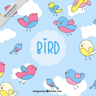 Hand drawn lovely colors birds background