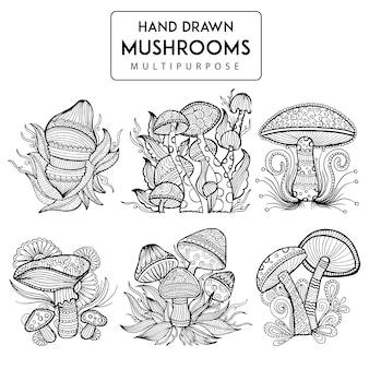 Hand drawn mushroom collection