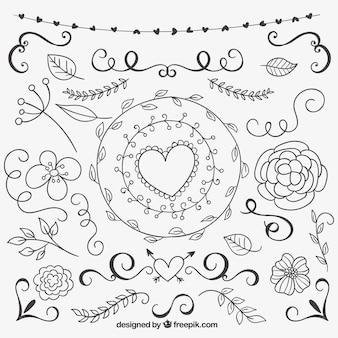 hand drawn natural decoration