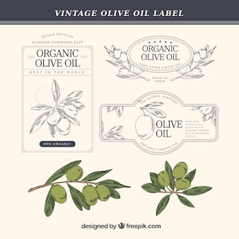 Hand-drawn olive oil labels in vintage style