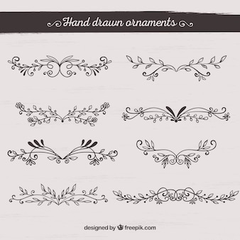 Hand drawn ornament collection