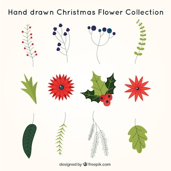 Hand-drawn pack christmas flowers