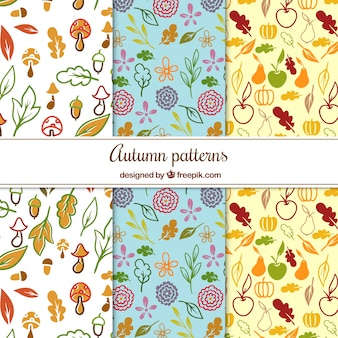 Hand drawn patterns with autumnal elements