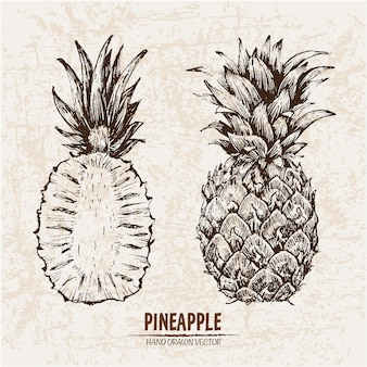 Hand drawn pineapple collection