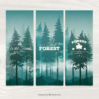 Hand drawn pines banners